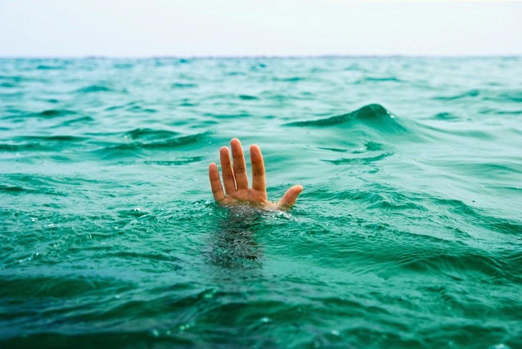 Hipótesis sobre la necesidad de nadar